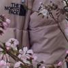 North Face ❄️