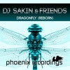 DJ Sakin & Friends - Dragonfly (Madwave Instrumental Mix)
