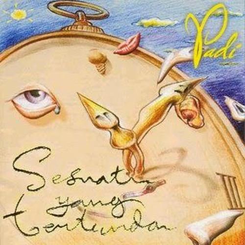 Padi - Sesuatu Yang Indah (Instrumental Cover)