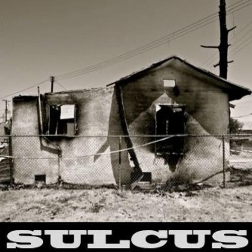 SULCUS - sednoids