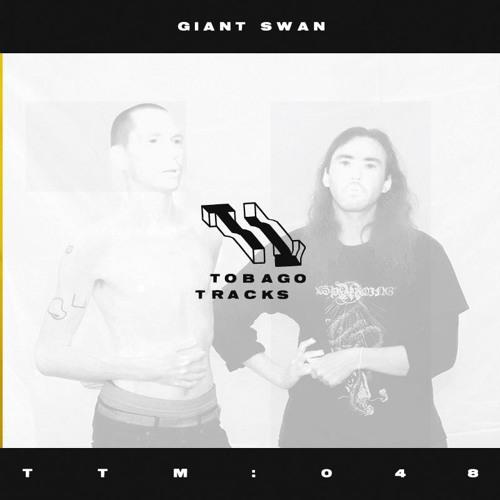 TTM048: - Giant Swan
