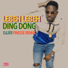 Video DING DONG - LEBEH LEBEH (DJJER FINESSE REMIX) download in MP3, 3GP, MP4, WEBM, AVI, FLV January 2017