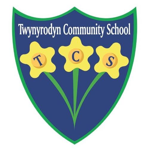 Twynyrodyn Community School