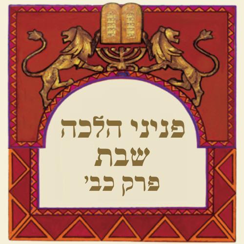 הקראת פניני הלכה שבת - פרק כב - צביון השבת