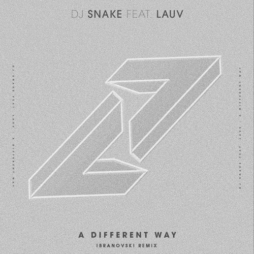 DJ Snake feat. Lauv - A Different Way (Ibranovski Remix)