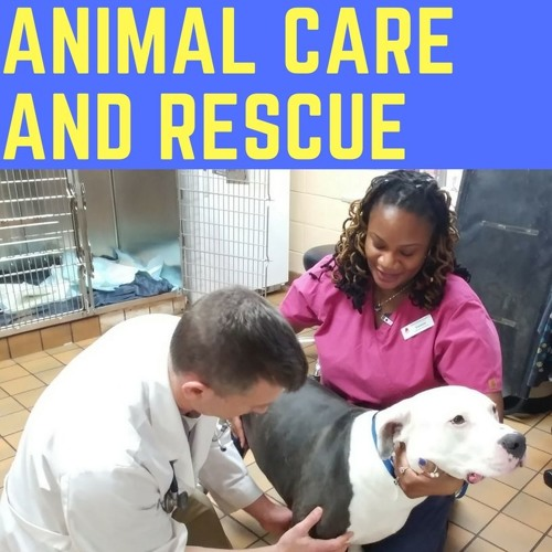 "Animal Care and Rescue - ""Emergencies"""