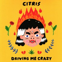 Citris - Driving Me Crazy