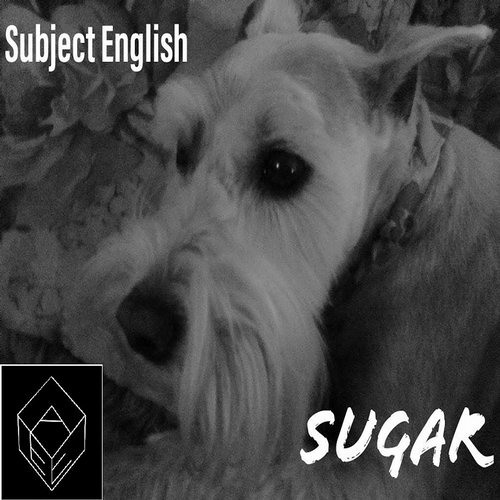 Subject English - Sugar (Subjects Distorted Synth Mix)