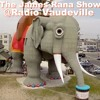 The James Rana Show - Lucy the Elephant