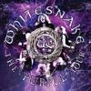 Whitesnake Love Aint No Stranger Live US
