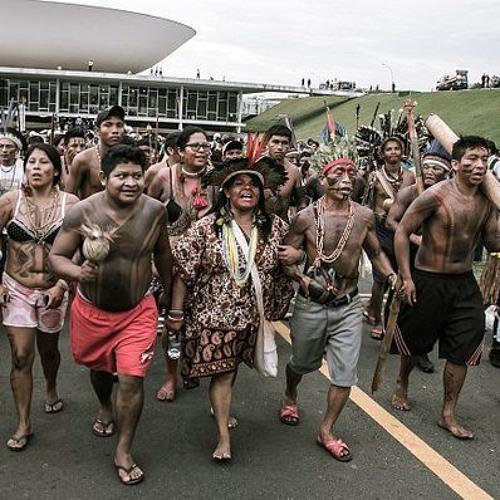 Ano leitoral traz mais desafios para luta indígena junto ao Congresso