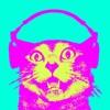DJ Sebbo - Touch Mahal (Original)