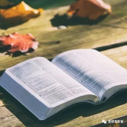 01.11 他是谁 (马太福音 8章)