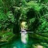 Zen Music,Relaxing Music,Calming Music,Peaceful Music,Stress Relief Music
