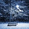 Love Song in Winter (Grafolio Winter Music Challenge 2017 WINNER)