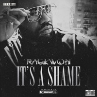 Raekwon - It's A Shame
