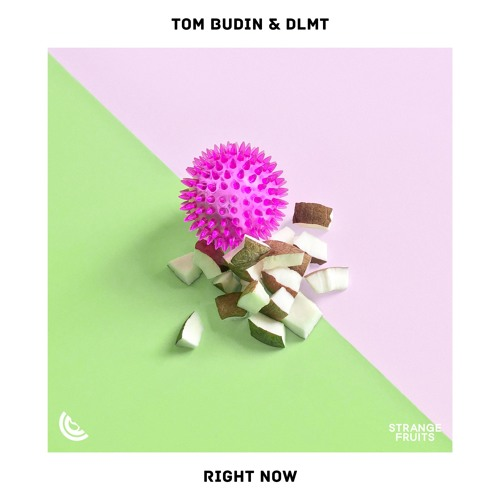 Tom Budin & DLMT - Right Now (Radio Mix)