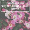 In Bloom (neck deep cover)