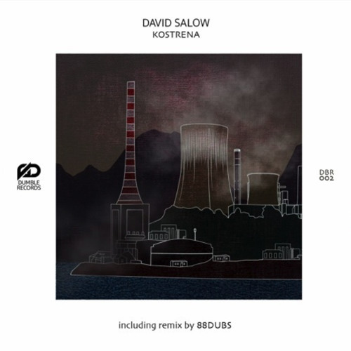 PREMIERE: David Salow - Kostrena (Original Mix) [Dumble Records]
