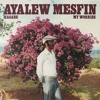Ayalew Mesfin - Liba Menta Hone