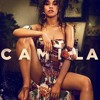 poster of Camila Cabello Something S Gotta Give song