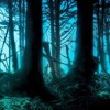 Forest Of Myths - Fantasy Music, OST, Soundtrack, Celtic Music, Harp Music, Beautiful Music