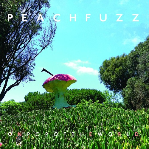 Peachfuzz - On Pop Of The World