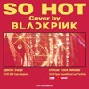 Black Pink - So Hot ( cover )