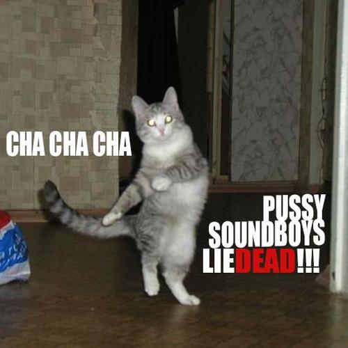 Nickynutz - Cha Cha Cha pussy soundboys lie dead [ 100 Limited FREE DL ]