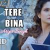 Tere Bina 1921 Zareen Khan Karan KundrraArijit Singh Aakanksha SharmaAsad KhanVikram Bhatt