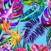 30 Minutes of Tropical Sounds[Free Download(Press More)]