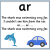 The Shark Was Swimming Very Far