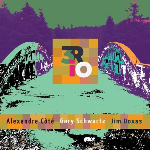 Gary Schwartz 3RIO