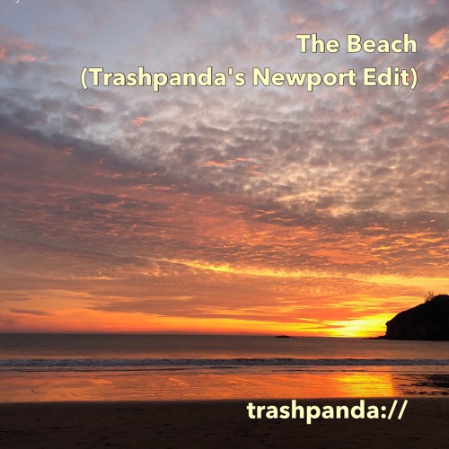 The Beach (Trashpanda's Newport Edit) - New Order