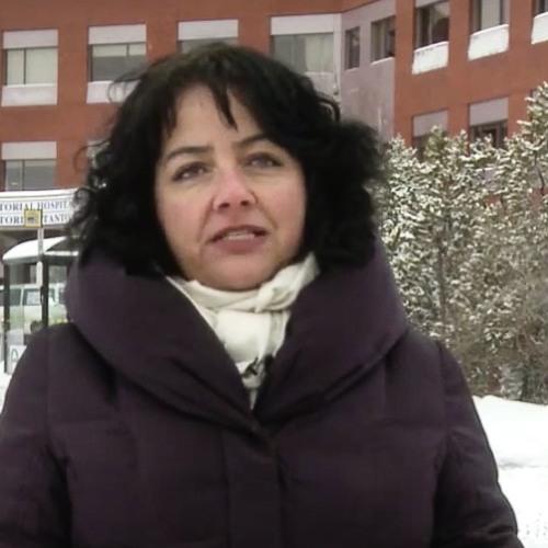 Sheila Bassi-Kellett: City of Yellowknife's working environment