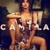 Never Be The Same - Camila Cabello (Cover)