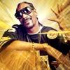 Dr. Dre ft. Snoop Dog - The Next Episode (San Holo Remix)