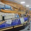 Part2: Nha Trang oceanographic museum