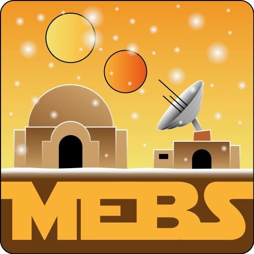 MEBS Episode 16: Meta-Analyse und Regionalvorbereitung