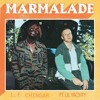 MACKLEMORE FEAT LIL YACHTY - MARMALADE (REMIX L.F)