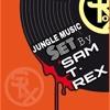 ragga\jungle set by sam t-rex