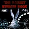 AXEN X ZAKII - Rabbit Strikes Back