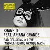 Shane D feat. Ariana Grande - Bad Decisions In Love (Andrea Fiorino Grande Mash) * FREE DL *