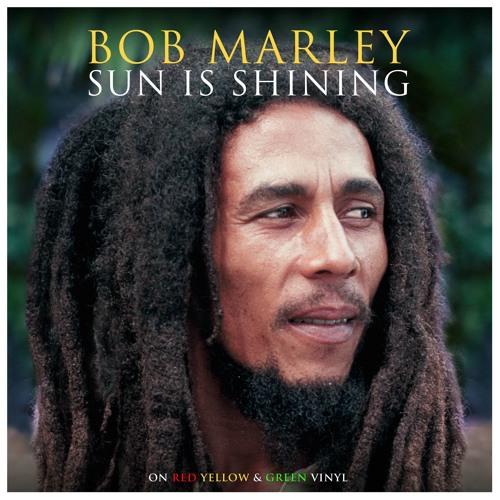 Sun is shining (Bob Marley ukulele cover)