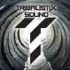Tribalistix Sound - Bang Bang (Send Fi Odi & PishPosh)