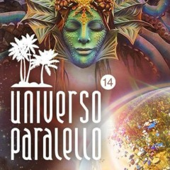 Psygroo @ Universo Paralelo 14 (Main stage)