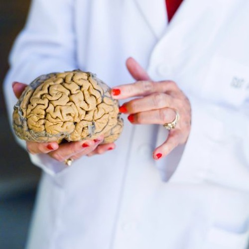 Cataloging the brain to make sense of functionality and cure disease