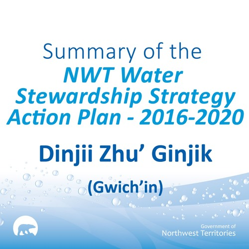 NWT Water Stewardship Action Plan GWICH'IN