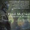 Finn McCool Theme