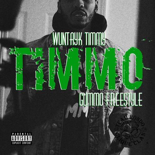 Timmo (Gummo Freestyle)